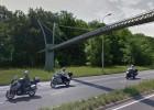 El costoso puente para ardillas que ellas desdeñan
