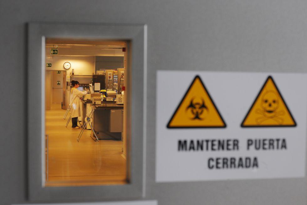 Un laboratorio en el Centro Nacional de Investigaciones Cardiovasculares.