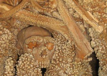 ¿Y si los neandertales se extinguieron por caníbales?