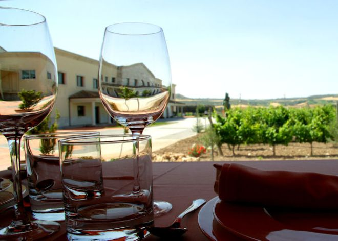 La buena vida se riega con vino. Vistas desde Matarromera, en Valladolid.