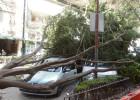 Un furioso viento provoca el caos en la Ciudad de México