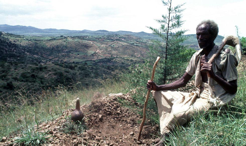 Un campesino, en una zona reforestada por el PNUD en 1982.