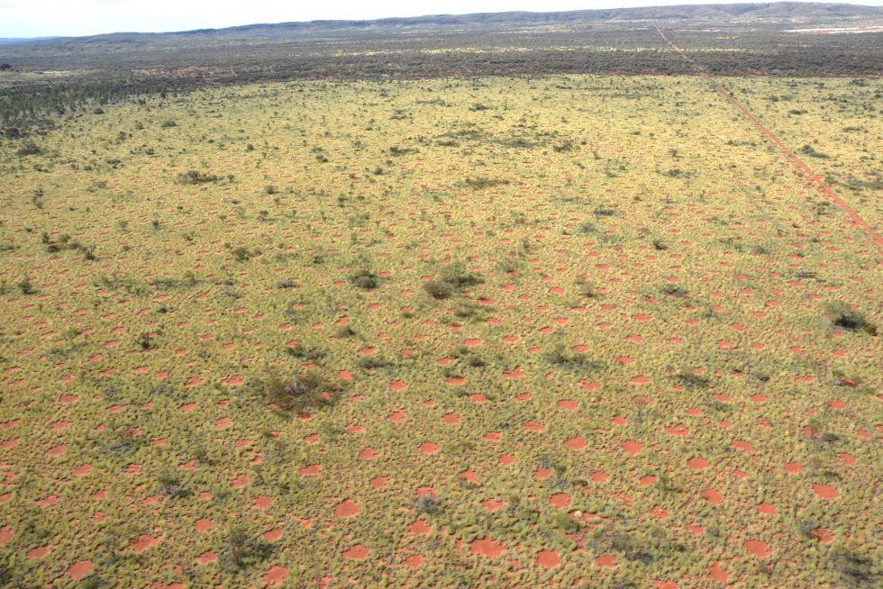 Centenares de círculos han sido descubiertos en el desierto del estado de Australia Occidental.