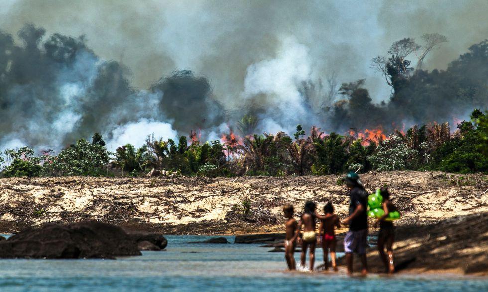 Las islas del Xingú fueron arrasadas para despejar el camino a la construcción de la presa