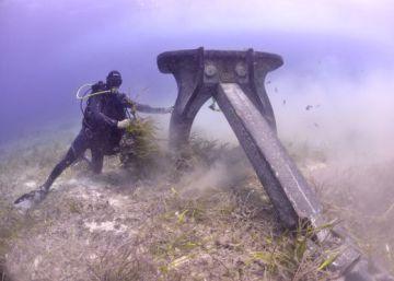 España tiene 1.600 kilómetros de bosques sumergidos