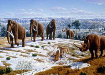 La sospechosa coincidencia entre la llegada humana y las extinciones