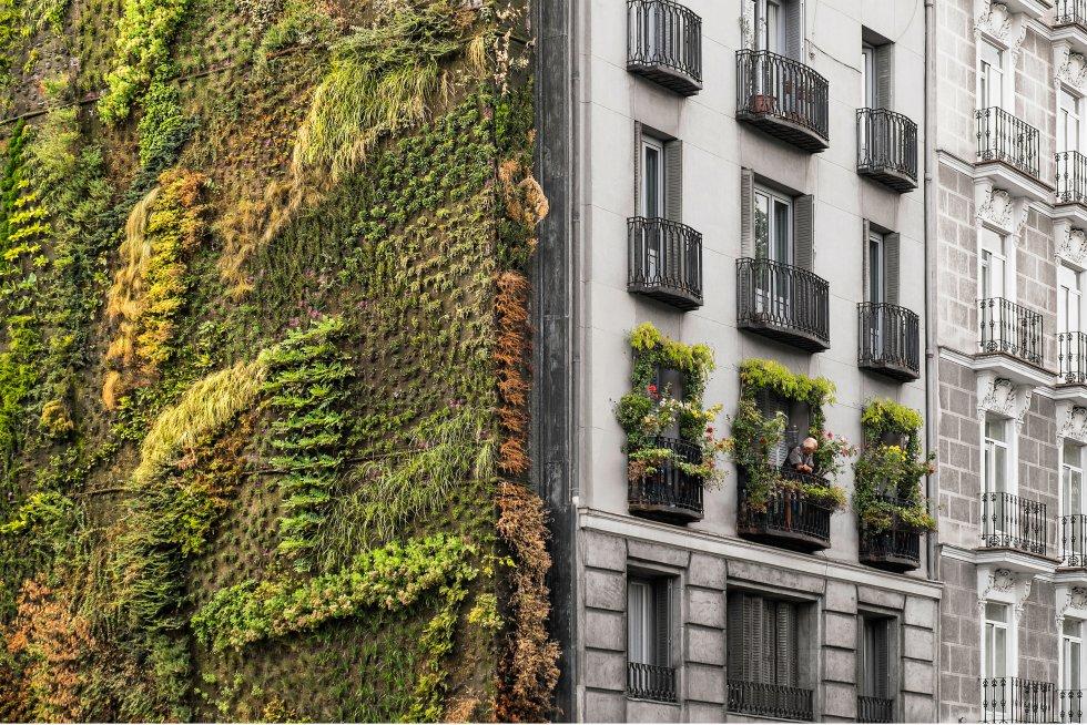Fotos iv premio eurostars madrid tower de fotograf a madrid el pa s - Jardin vertical caixaforum ...