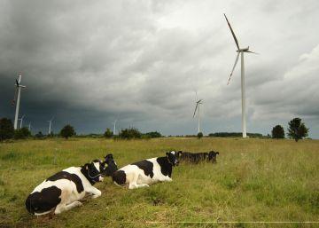 Las renovables luchan contra el escepticismo de los checos