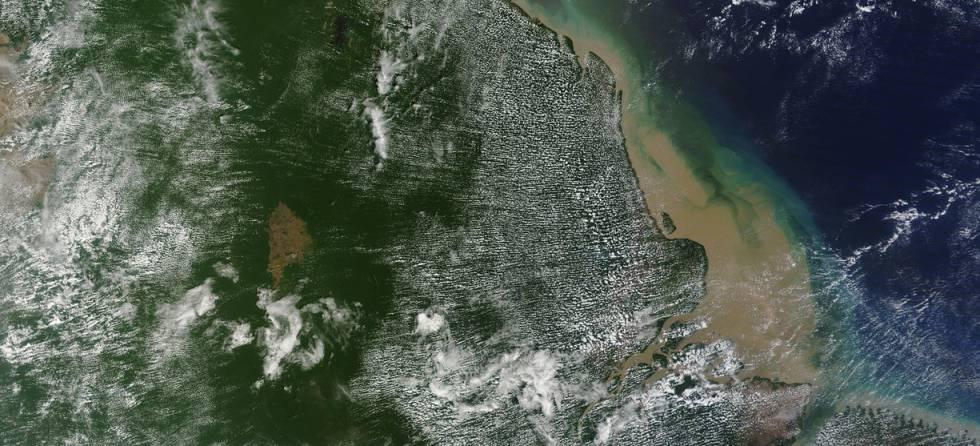 Vista de satélite de la zona en la que se ha descubierto el arrecife de coral.