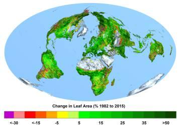 Mapa que muestra el cambio de vegetación.