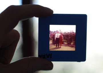 ¿Por qué los enfermos de alzhéimer dejan de reconocer a sus familiares?