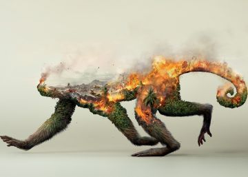 La denuncia de un mono en llamas