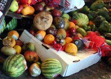 La (falta de) conciencia del despilfarro de comida
