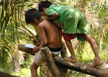 Educar en la jungla de Sumatra