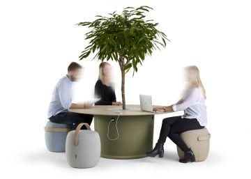 Las plantas van a la oficina