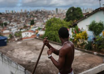 Zika: ¿realmente hay motivos para suspender los Juegos Olímpicos?
