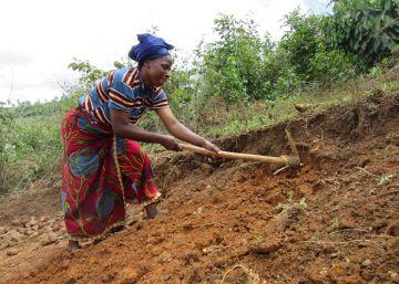 Fin del ébola en Guinea