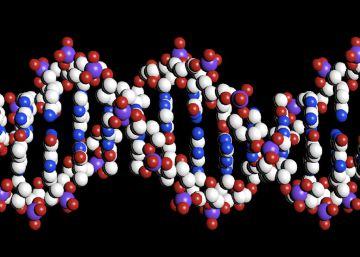 La oncología pasa de estudiar la célula a concentrarse en los genes