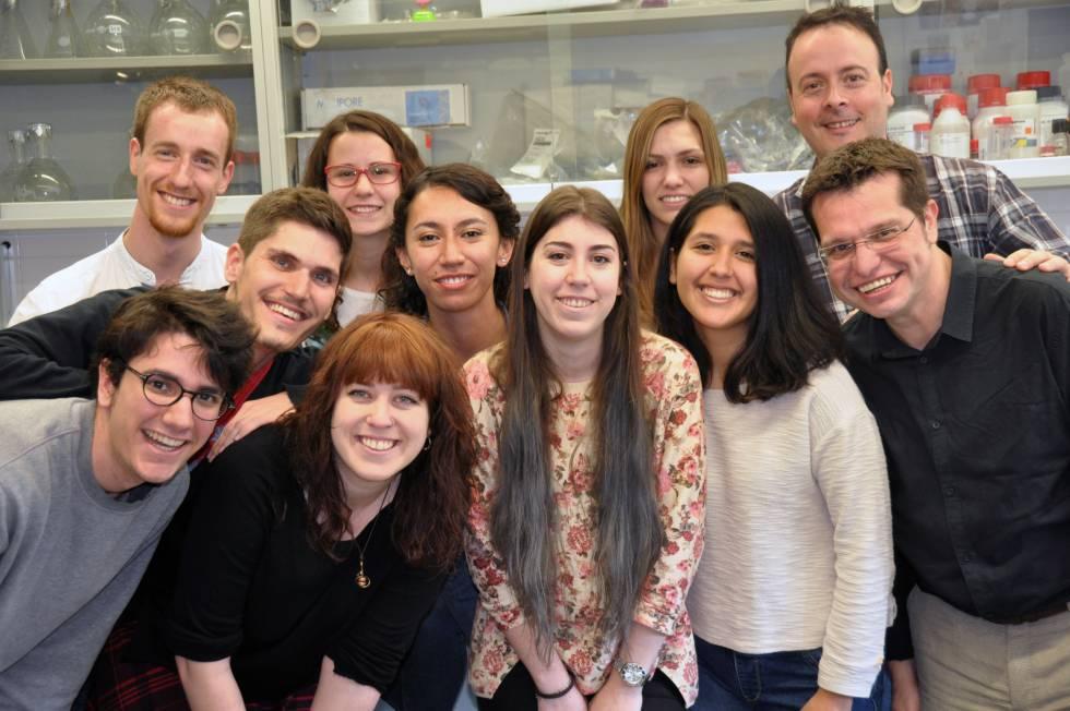 Investigadores del laboratorio de Cristian Cañestro y Ricard Albalat.