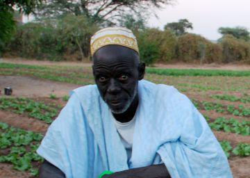 Senegal planta cara al desierto