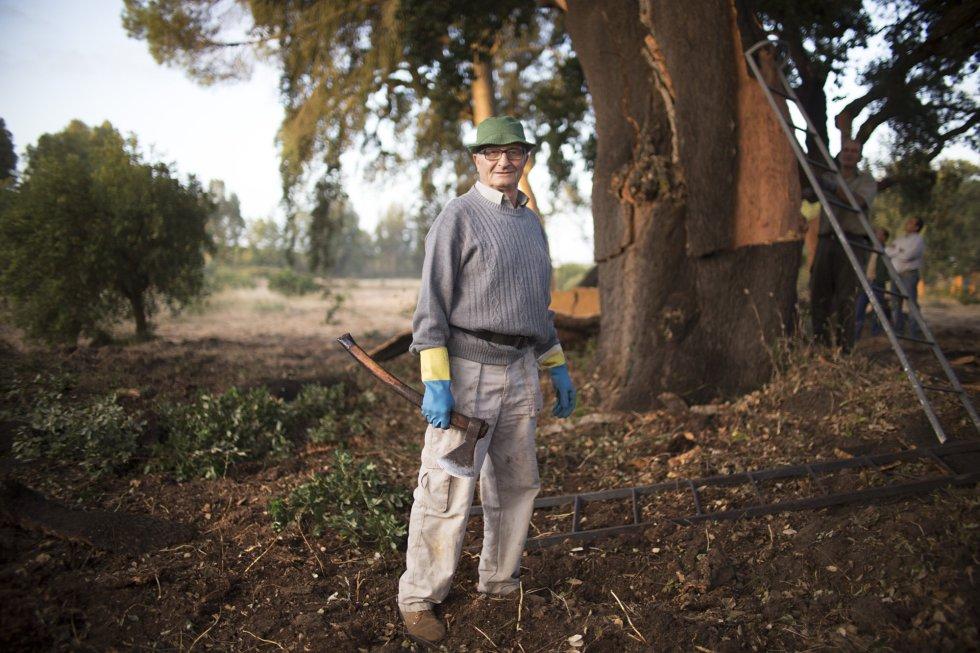Constancio Artero, 59 años, lleva descorchando desde los 18 años.