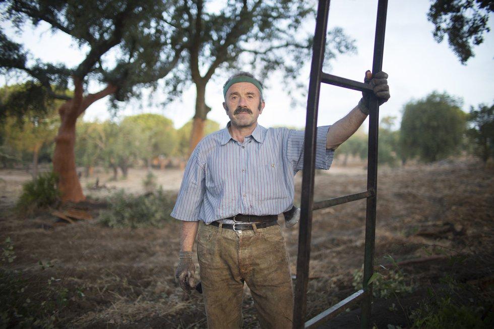 Climaco Ruiz, 58 años, empezó a descorchar en el año 1977.