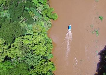 Crónicas desde Costa Rica: el río Sierpe