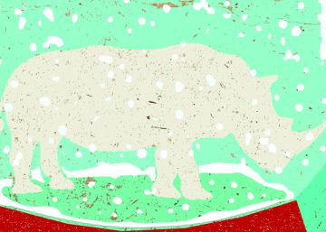 El rinoceronte blanco