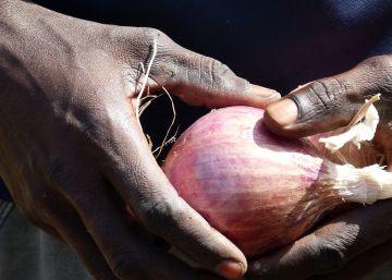 Cebollas contra la emigración irregular