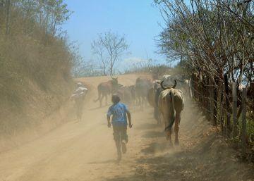 La sequía ahoga Guatemala