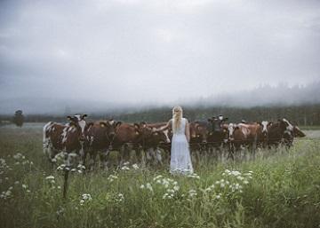 La joven sueca capaz de atraer una manada de vacas con sus cantos