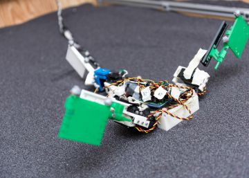Un robot ayuda a entender cómo se movían por tierra los primeros vertebrados