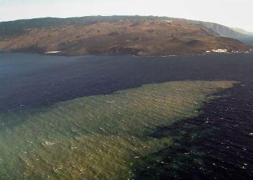 La muerte y resurrección de la vida marina tras las erupciones en El Hierro