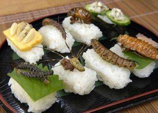 Sushi de insectos: ¿Otro hype repulsivo o un manjar?