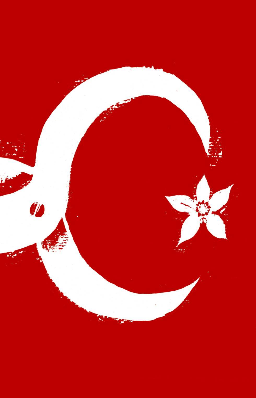 La regresión turca