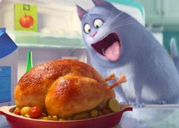 Alicante recibe la película 'Mascotas' a lo grande
