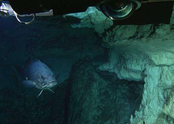 La Ciudad Perdida en alta mar quiere ser Patrimonio Mundial