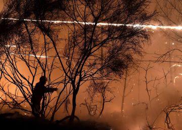Incendios en Portugal, en imágenes