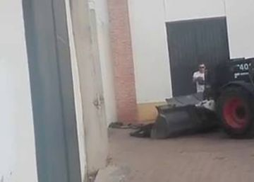 PACMA publica un vídeo de una vaquilla agonizando tras un espectáculo de recortes