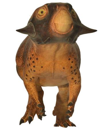Vista de frente del psittasaurus