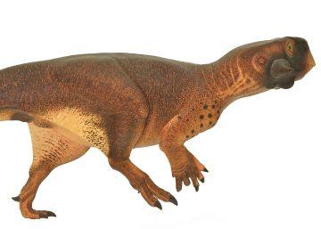Así era la piel del 'lagarto loro'