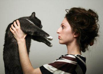 Los perros distinguen las palabras que les decimos, pero ¿y los gatos?