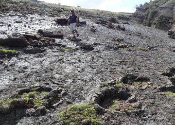 Huellas de dinosaurios en Cal Orcko