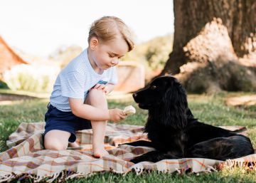 Por que o Príncipe George sempre usa bermudas?