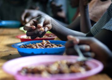 La malnutrición es un problema de todos