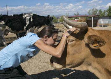 La granja de los animales felices