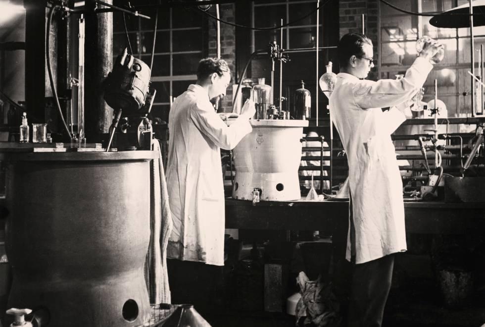 La historia de la penicilina y el primer paciente que no salvó