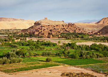 Luchar contra el desierto en plena cumbre del clima