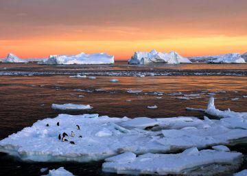 Les dades que indiquen que el canvi climàtic ja està alterant la vida del planeta