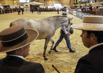 Salón Internacional del Caballo de Pura Raza Española